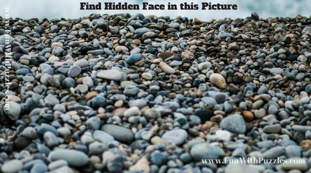 Picture Puzzle to find hidden face