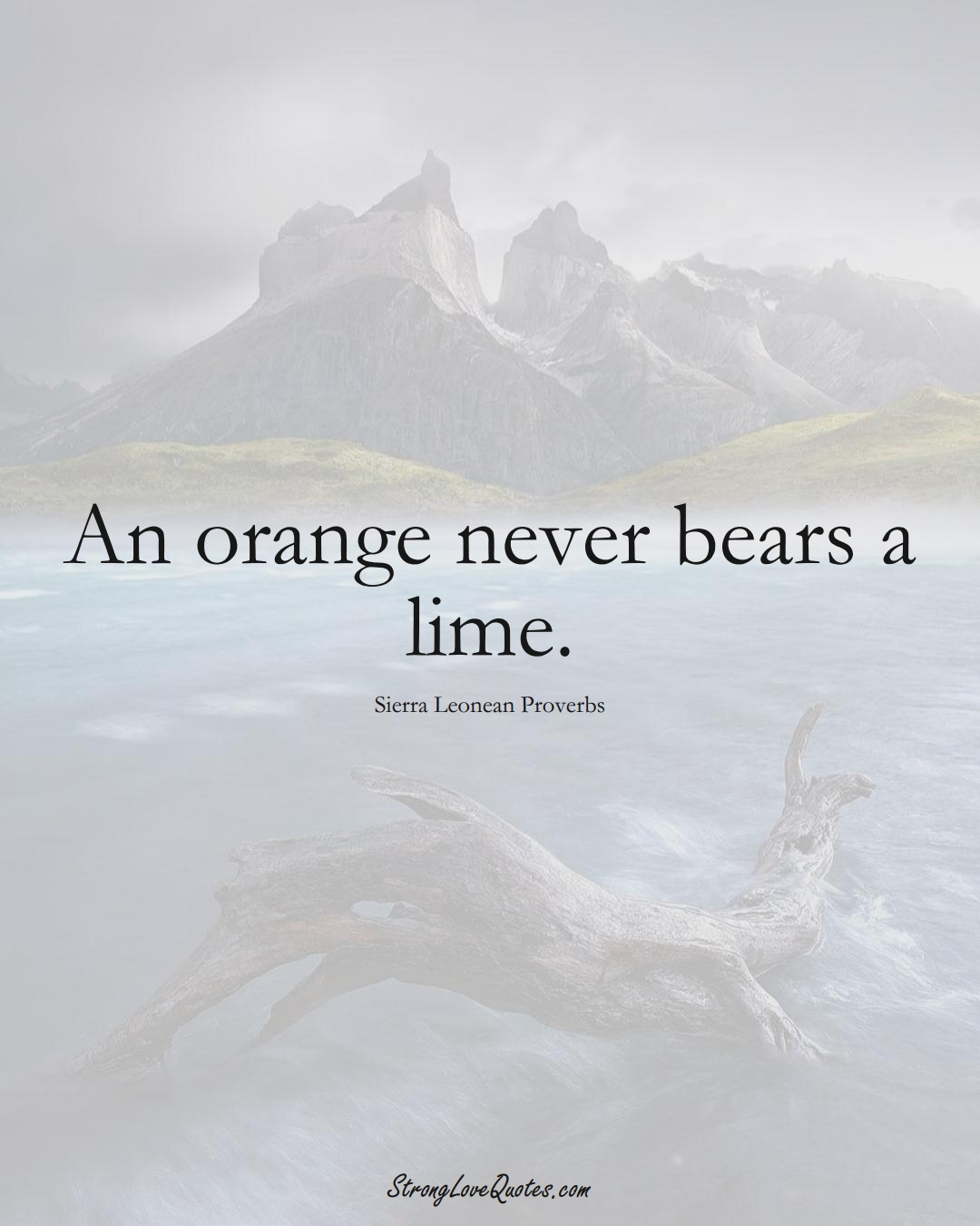 An orange never bears a lime. (Sierra Leonean Sayings);  #AfricanSayings