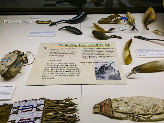 Los búfalos y los Lakota - Akta Lakota Museum