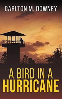 A Bird in a Hurricane - a page turner legal thriller by Carlton Downey