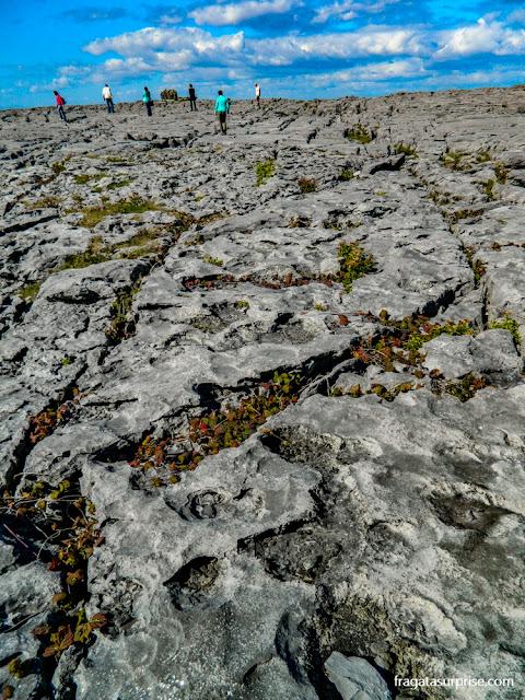"""Burren, o """"deserto fértil"""" da Irlanda, próximo aos Cliffs of Moher"""