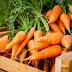 Τα οφέλη του καρότου στην υγεία των παιδιών