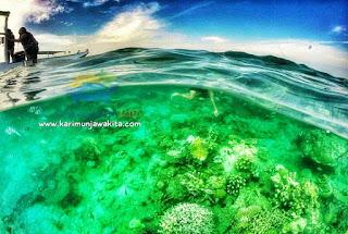 tempat wisata snorkeling karimunjawa