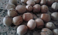 avellanas antes de pelar para hacer la crema de cacao casera.