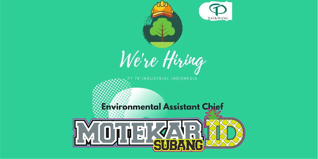 Info Loker PT. Taekwang Environmental Assistance Chief