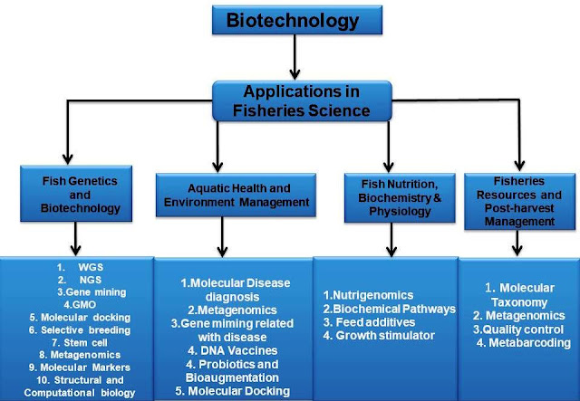 Biotechnology in fisheries
