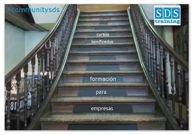 Formación para empresas, están los departamentos capacitados - SDS training