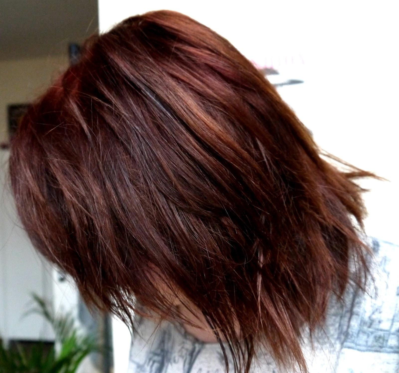 Lush Henna Natural Dye In Caca Marron Before After Good Golly