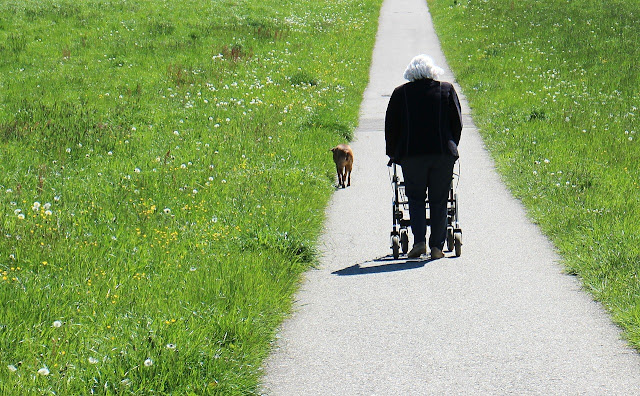 How To Choose The Best Rolling Walker