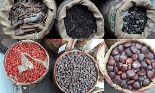 bags of spices in kerala markets - Nutmegs, cinnamon, mace, peppercorns, date jaggery