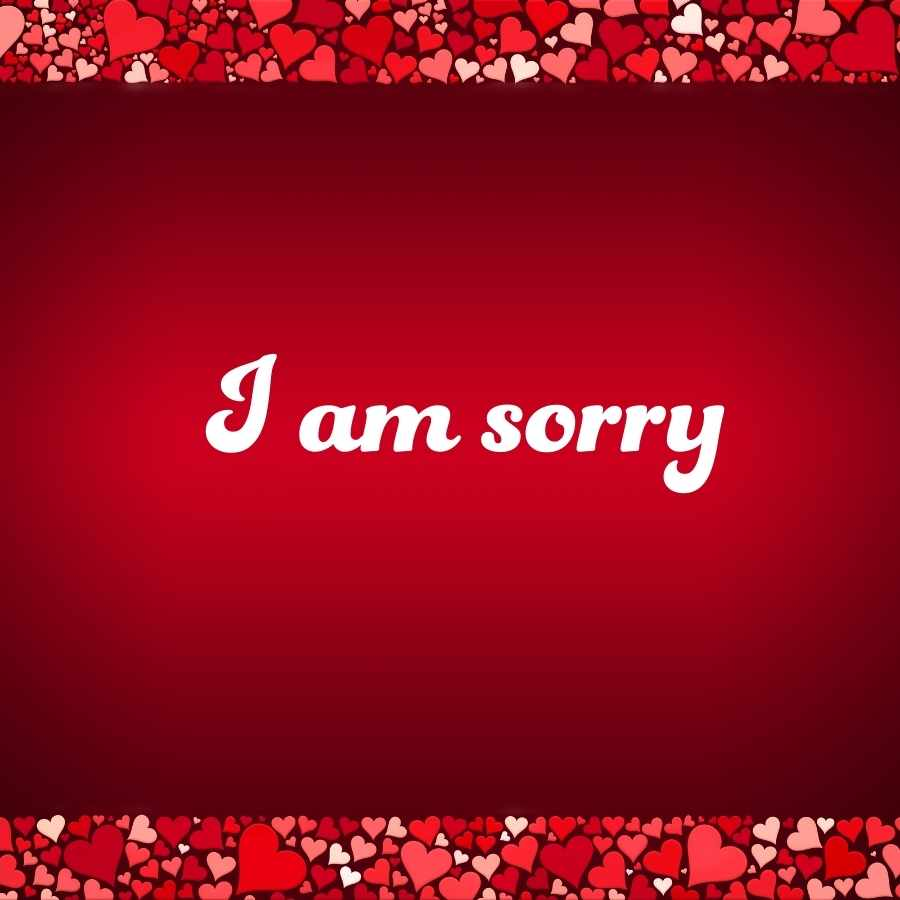 sorry images for lover
