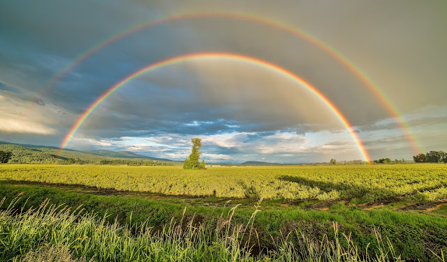 Rainbow Wallpapers in 4K - Pics Directory