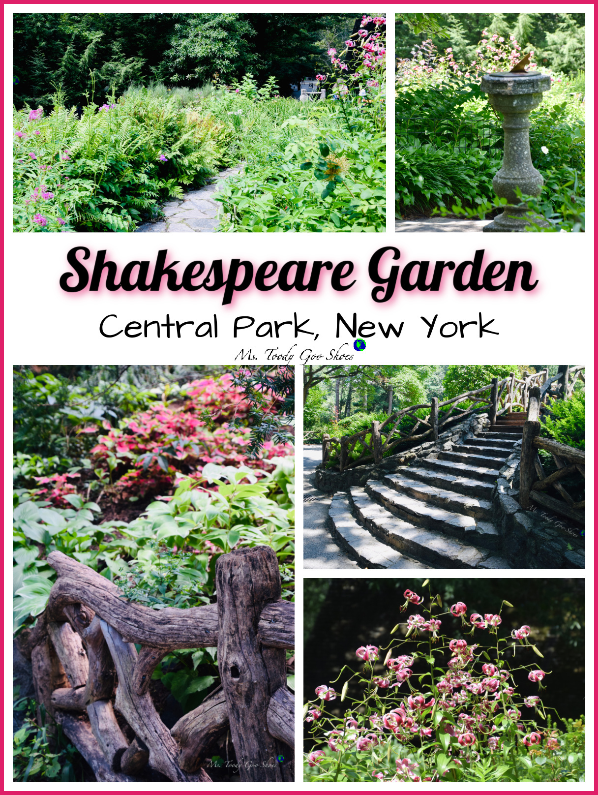 Shakespeare Garden is a must-see when visiting Central Park in spring and summer | Ms. Toody Goo Shoes