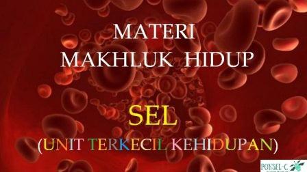 materi makhluk hidup, materi ipa kelas 9 10 11, materi kehidupan, materi sel, sel pada makhluk hidup, manfaat sel, peranan sel pada kelangsungan hidup, www.bukusemu.my.id, bukusemu, buku semu, ebook ipa