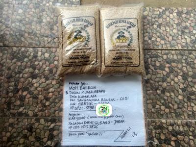 Benih padi yang dibeli   MOH. BAHRON Gresik, Jatim.  (Sebelum packing karung).
