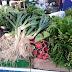 Agricultores de Pilar vão expor produtos em Feira de produtos orgânicos na Chã