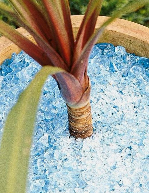 Blue Crushed Glass Mulch Potting Planter Idea
