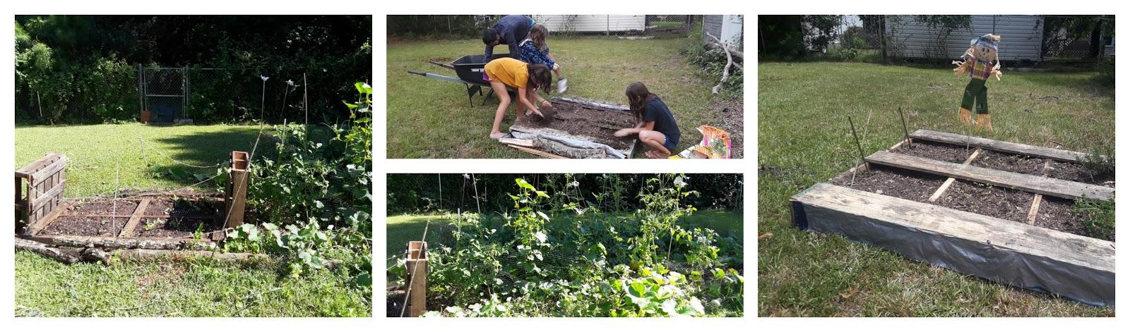 jardinage en caroline du nord