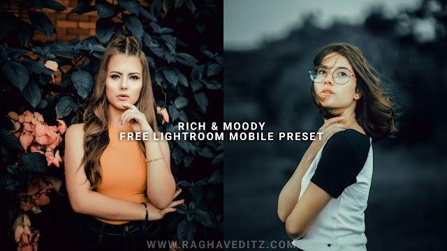 Rich & Moody Lightroom Mobile Preset | Lightroom Preset