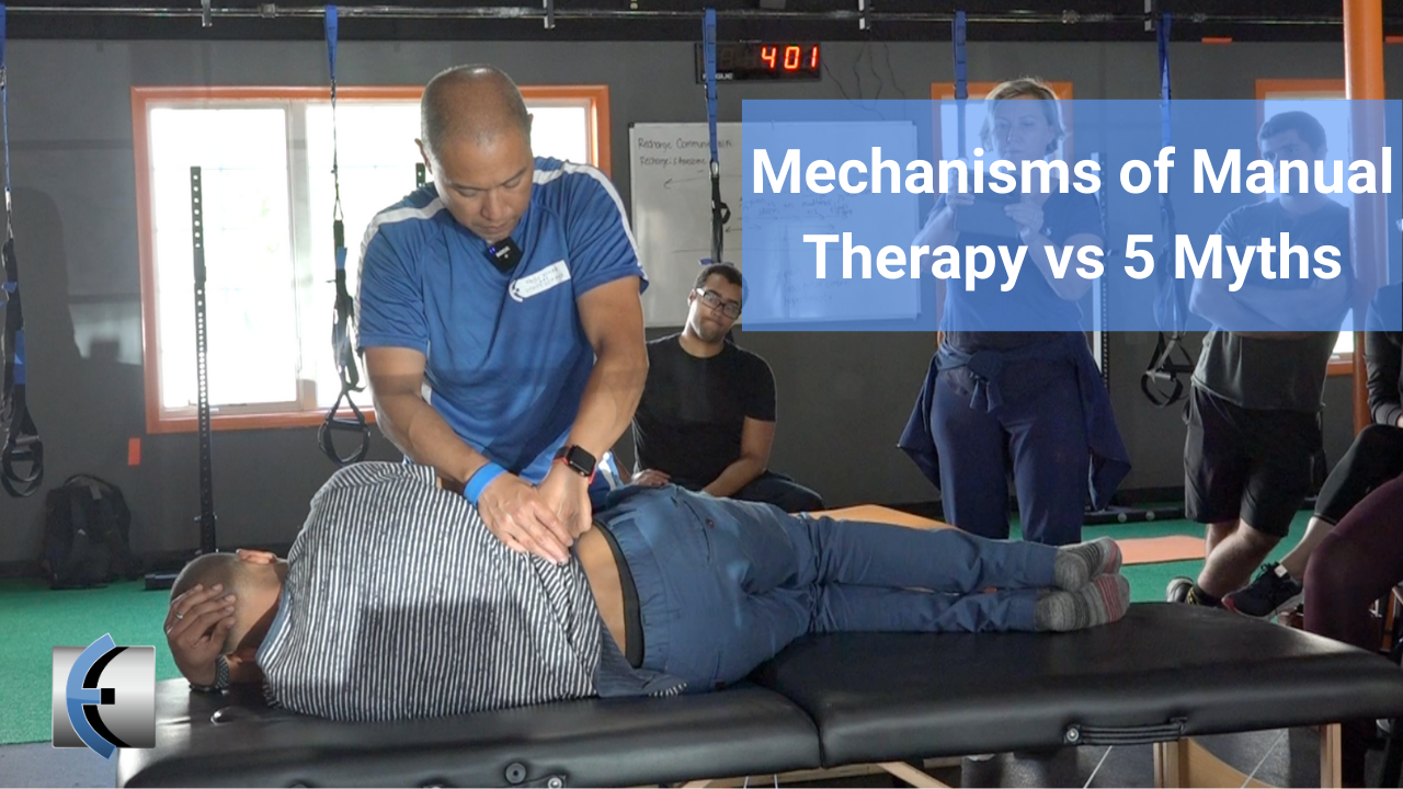 Mechanisms of Manual Therapy vs 5 Myths - themanualtherapist.com