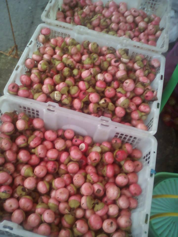 buah kalangkala di pasar
