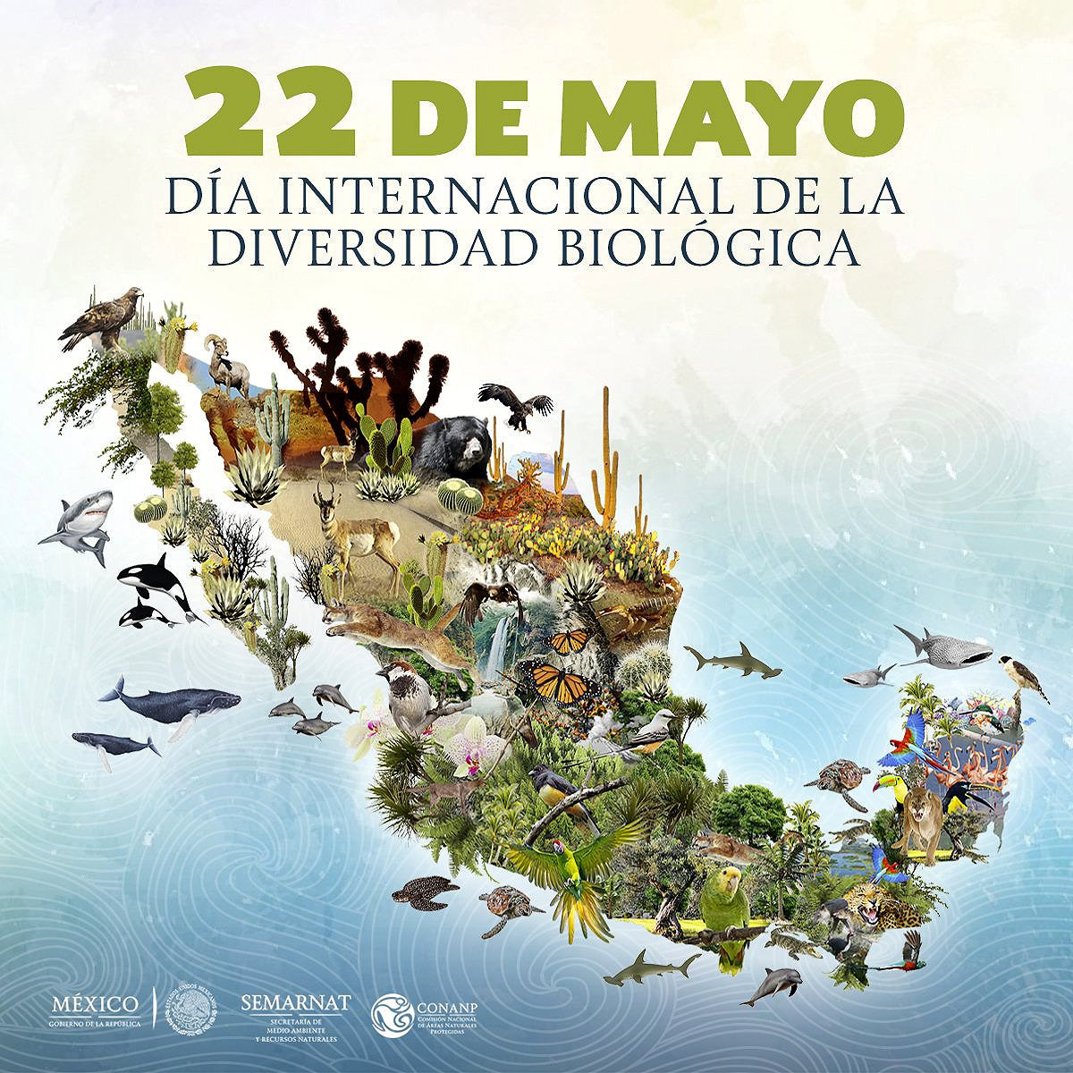 Biodiversity map of Mexico