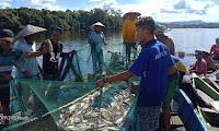Warga Kapuas Hulu Panen Ikan Entukan di Danau Lindung Sunjung