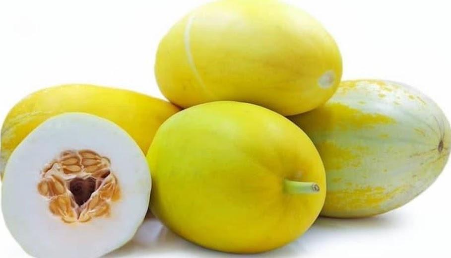 Benih Biji Buah Timun Suri Cocok untuk Sup Buah Isi 40 Biji Bekasi
