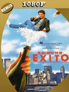 El secreto de mi éxito (1987) [1080p REMUX] Latino [GoogleDrive] SilvestreHD