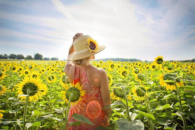 Imagen que muestra una mujer en medio de un campo de girasoles