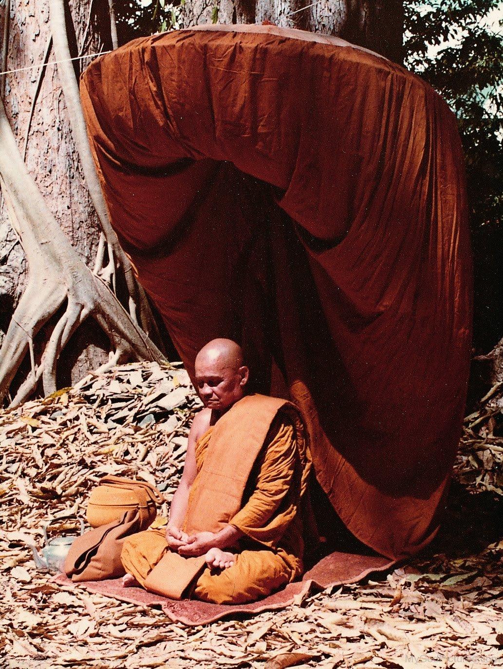 """Thiền sư """"Xem bói: Tiên đoán được tương lai"""" - Ajahn Chah"""