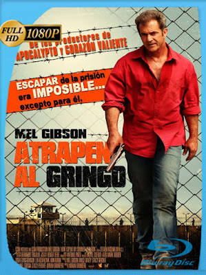 Atrapen al Gringo (2012) [1080p] Latino [GoogleDrive] [MasterAnime]