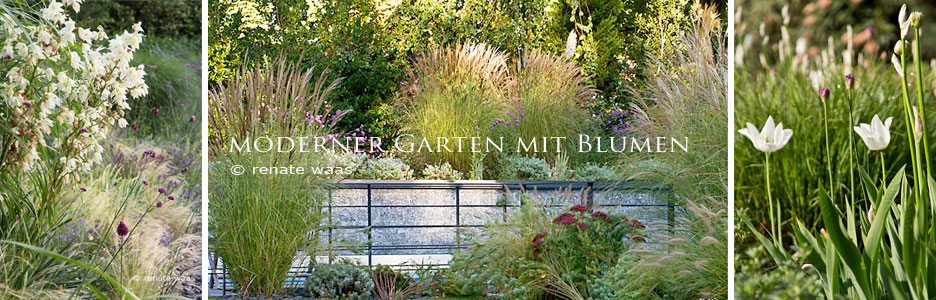 gartenblog zu gartenplanung gartendesign und gartengestaltung moderner garten mit blumen. Black Bedroom Furniture Sets. Home Design Ideas