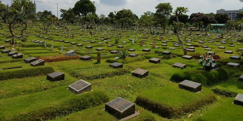 Rumput Kuburan   Rumput Makam