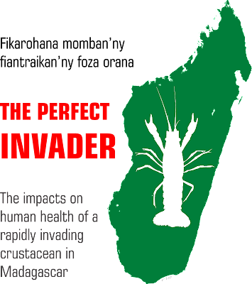 The Perfect Invader logo, version 7