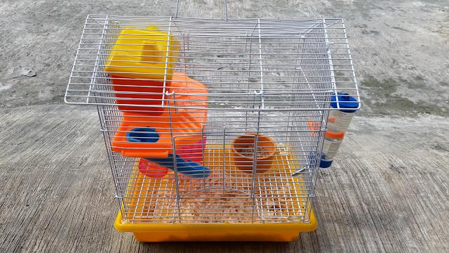 kandang tikus putih
