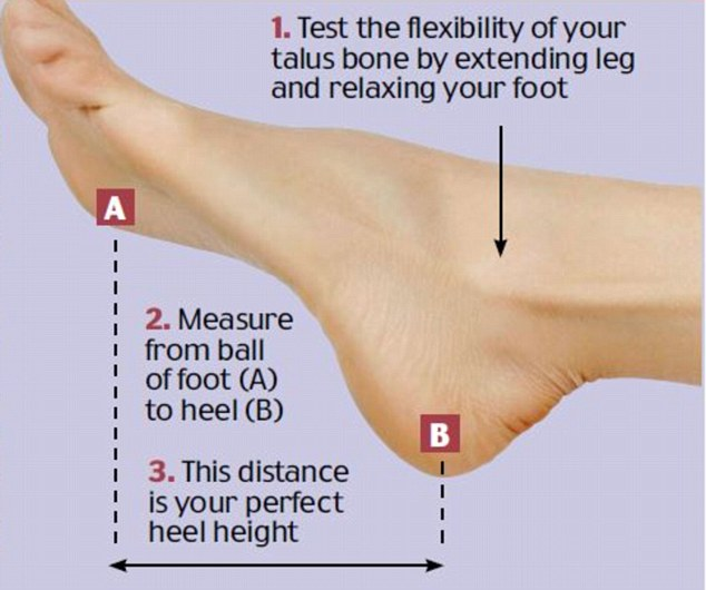 Measure Your Shoe Size Chart