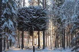 The Bird's Nest – TreeHotel – Sweden