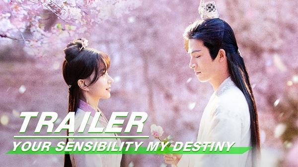 Download Drama China Your Sensibility My Destiny Subtitle Indonesia