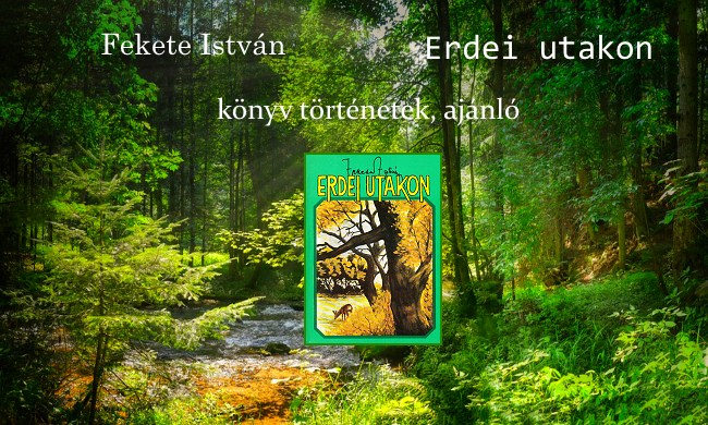 Fekete István Erdei utakon könyv történetek, ajánló