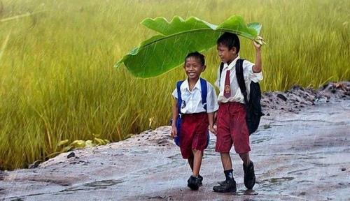 Siswa sekolah dasar saat berjalan di bawah hujan