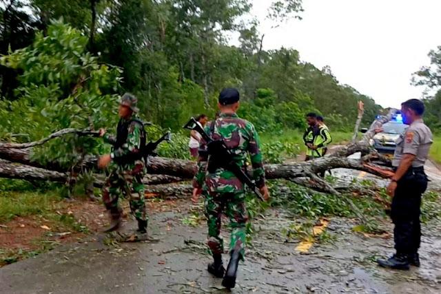 Satgas Pamtas RI-PNG Yonif MR 411 Bersihkan Pohon Tumbang di Jalan Trans Papua