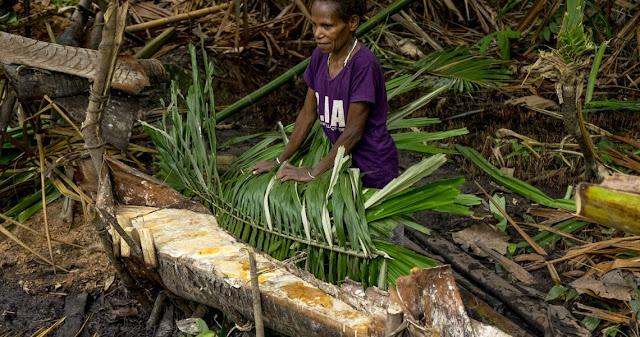 ULMWP Serukan Rakyat Kembali ke Cara Hidup Tradisional