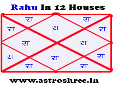 effect of rahu in different houses of kundli