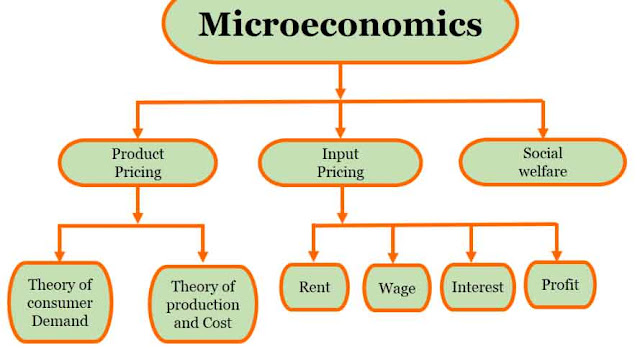 What is Micro Economics?