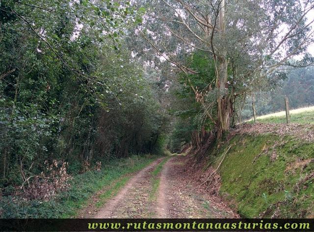 Ruta Das Minas PR AS-182: Subiendo por pista a la Mina