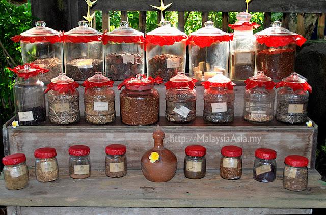 Balinese Jamu Types