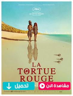 مشاهدة وتحميل فيلم The Red Turtle 2016 مترجم عربي