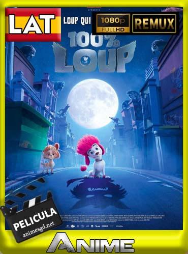 100 Wolf Pequeno Gran Lobo 2020 Latino 1080p Bd Remux Animesgd Net