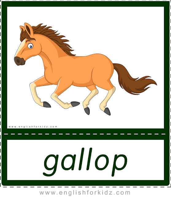 Verb gallop (horse) - printable animal actions flashcards for English learners
